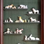 collection shadowboxes
