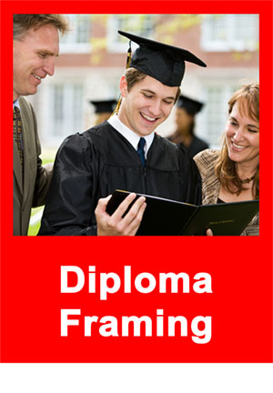 friends don t let friends buy bookstore diploma frames by tamis  friends don t let friends buy bookstore diploma frames